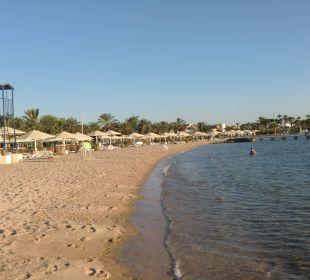 Strand mit Liegen
