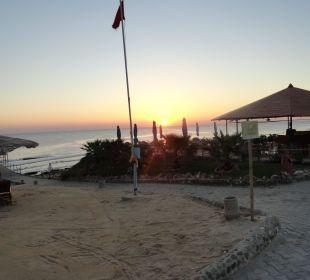Sonnenaufgang an der Strandbar