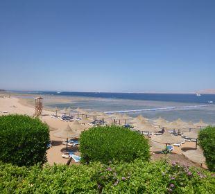 Widok ogólny Melia Sharm Resort & Spa
