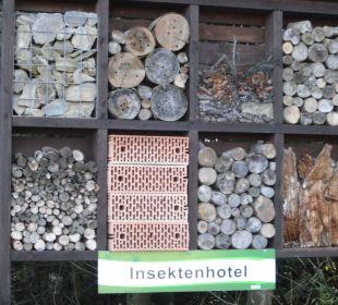 Insektenhotel auf dem Lernpfad - Kappe Hapimag Resort Winterberg