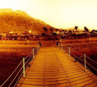 Panoramabild vom Steg aus gesehen