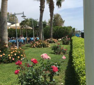 Gartenanlage Hotel Side Sun