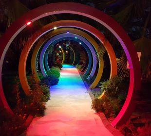 11 Siam Elegance Hotels & Spa