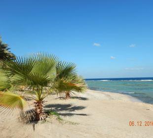 Urlaubsfeeling pur Brayka Bay Resort