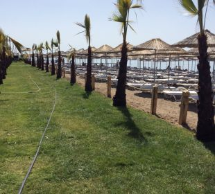 Strand Siam Elegance Hotels & Spa