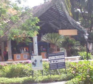 Eines der 3 Restaurants