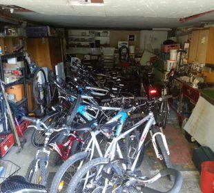 Viele Fahrräder zum Ausborgen Hotel Ariell