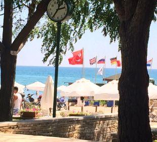 Strand Barut Arum