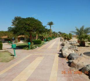 Schöne Anlage Hotel Shams Safaga