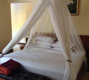 Blick ins Zimmer Villas Parigata Resort