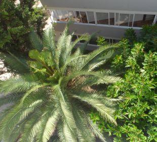 Ausblick vom Flur vor den Zimmern (4. Etage) Appartments Pabisa Orlando