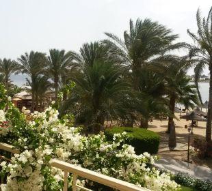 Ausblick von Zimmer 11'107 - vom Feinsten! Brayka Bay Resort