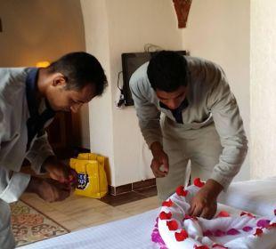 Atef und Emad beim Blumenbau