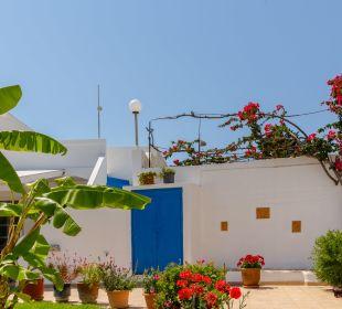 Gartenanlage Antonios Apartments