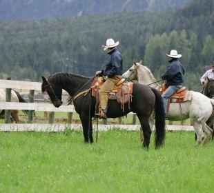Pferdetrekkiing im Hotel Hubertushof Hotel Hubertushof