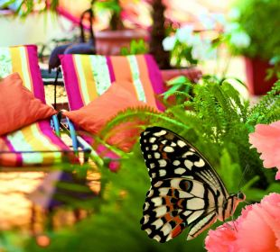 Schmetterlingspavillon Thermenhotel Ronacher