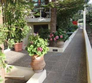 Bepflanzung Hotel Kalidon