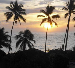 Sonnenaufgang...einfach schön VIK Hotel Cayena Beach Club