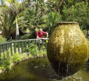 Mit Goldfischen und Schildkröten Hotel Hacienda San Jorge