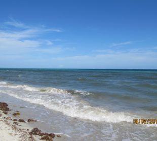 Bild beim Strandspaziergang