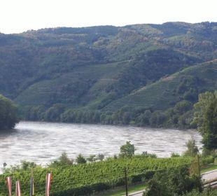 Donau vom Balkon aus Gartenhotel Pfeffel