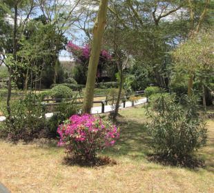 Сад Hotel Lake Nakuru Lodge