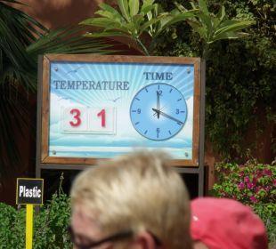 Super Temperaturen im November TUI SENSIMAR Makadi Hotel