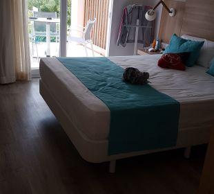 Zimmer  COOEE Cala Llenya Resort Ibiza