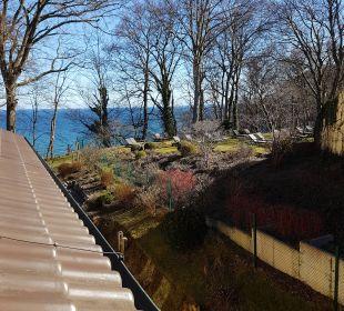 Zimmer Waldseite vom Balkon Inselhotel Rügen B&B