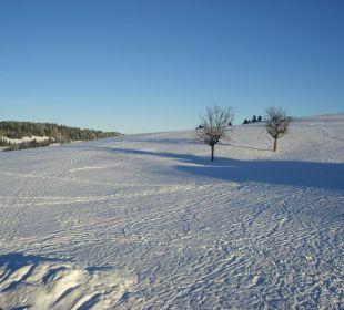 Ausblick DZ mit Nordbalkon im Winter Berghof am Paradies