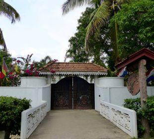 Hoteleingang von der Straße aus Bougain Villa