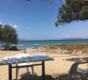 Umgebung Hotel Horizon Beach Resort