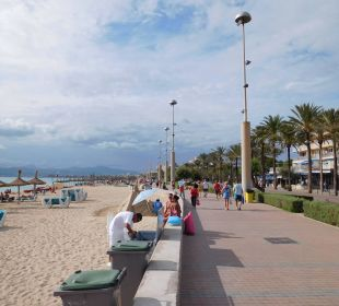 Strand  Hotel Palma Playa - Cactus