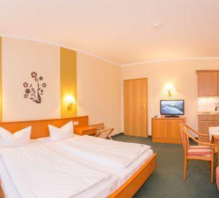 1-Raum-Appartement Aparthotel Villa Osada