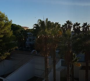 Ausblick OLA Aparthotel Cecilia