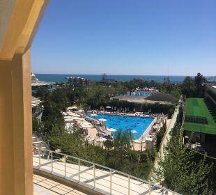 Pool Hotel Delphin Imperial