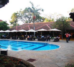 Poolanlage Hotel Southern Sun Mayfair