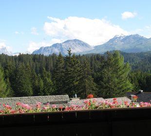 Immer wieder bestaunt Hotel Waldhaus am See