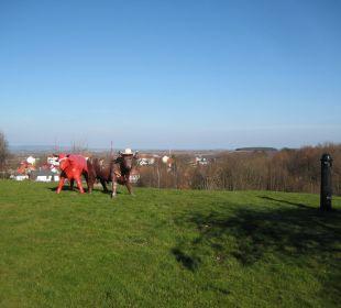 Tolle Aussicht Berghotel Ilsenburg