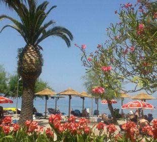 Blick von der Taverne zum Strand Hotel Three Stars Village
