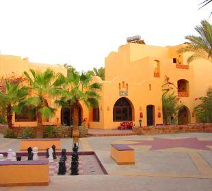 Shisha Bar Hotel Steigenberger Coraya Beach
