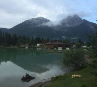 Blick auf das Hotel Hotel Fischer am See