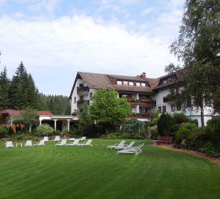 Ruhe Waldblick Hotel Kniebis