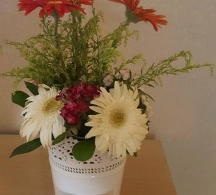 Kwiaty w pokoju Bellis Deluxe Hotel