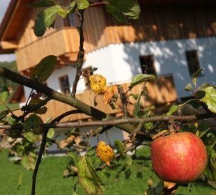 Gartenanlage Ferienbauernhof Kilger