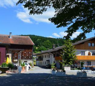 Der Sommer bringt frische Farbe Berggasthof Hotel Fritz