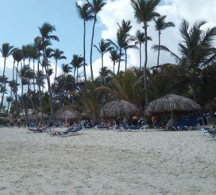 Breiter und sauberer Strand Occidental Punta Cana
