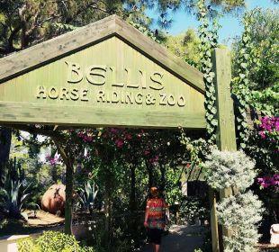 Eingang zum Zoo Bellis Deluxe Hotel