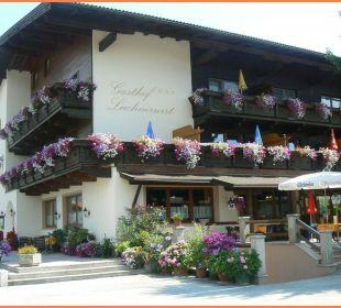 Luchnerwirt im Sommer Gasthof Pension Luchnerwirt (Hotelbetrieb eingestellt)