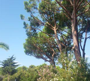Schöne Botanik Park Hotel Marinetta